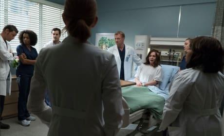 Rallying the Team - Grey's Anatomy Season 14 Episode 4