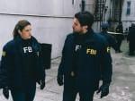 New Insights - FBI