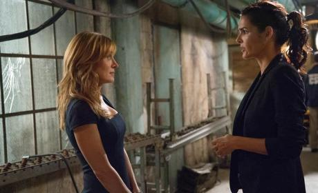 A Grisly Murder - Rizzoli & Isles