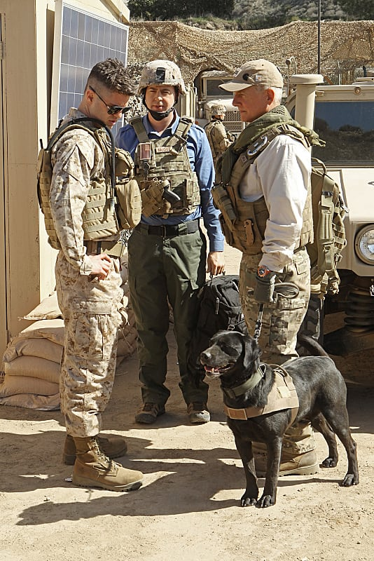 Gibbs, Tim and K9