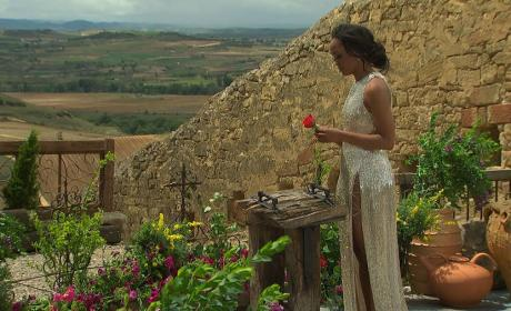 The Last Rose - The Bachelorette