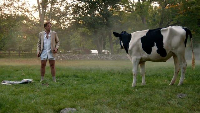 Bull: Dr. Jason Bull