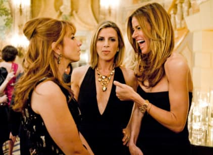 Watch The Real Housewives of New York City Season 3 Episode 14 Online