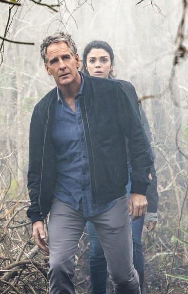 Into the Woods - NCIS: New Orleans Season 3 Episode 16