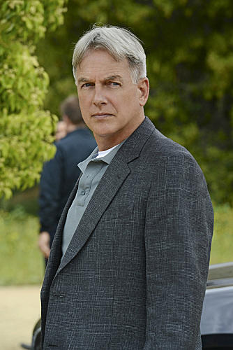 Mark Harmon as Gibbs