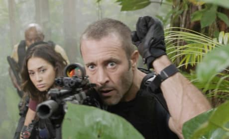 Bungle in the Jungle - Hawaii Five-0 Season 8 Episode 15