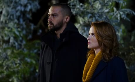 The Return of Japril? - Grey's Anatomy Season 13 Episode 16