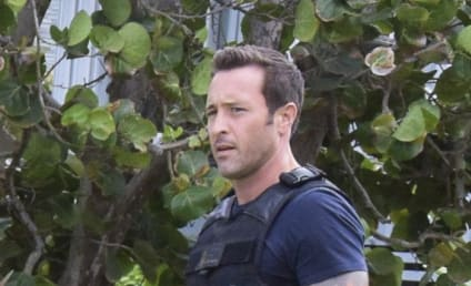 CBS Renewals: Hawaii Five-0, Scorpion, Bull & 15 More!!!