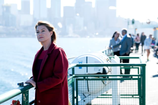 Ferry Boat Flashbacks - Grey's Anatomy Season 14 Episode 7
