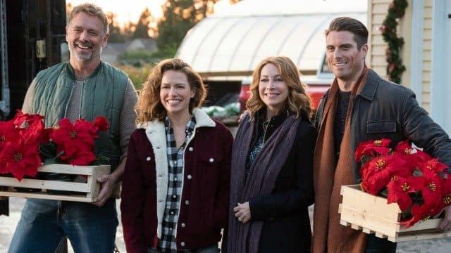 Poinsettias for Christmas - Lifetime (Nov 23)