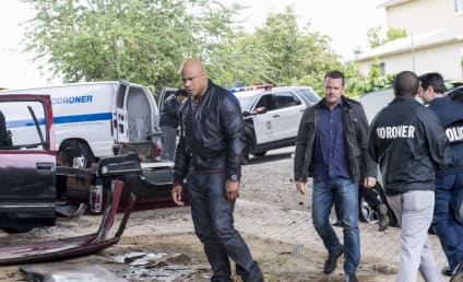 NCIS: Los Angeles Season 8 Episode 22 Review: Golden Days