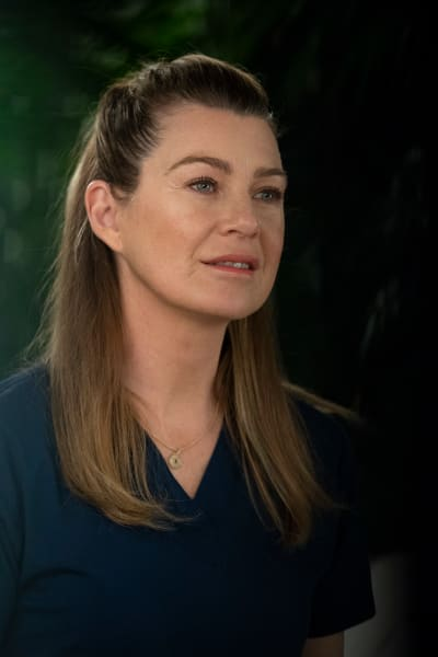 Supportive Girlfriend - Grey's Anatomy Season 15 Episode 18