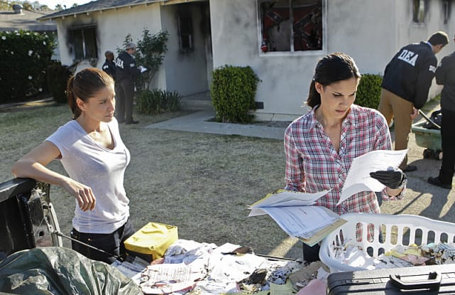 Kensi Looks Over Papers