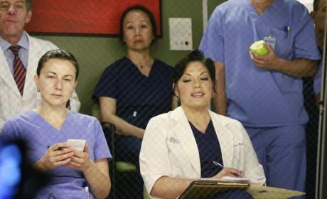 Callie Takes Notes - Grey's Anatomy Season 11 Episode 19