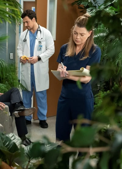 Avoidance - Tall - Grey's Anatomy Season 15 Episode 18