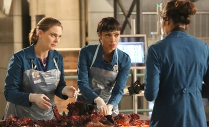 Bones Winter Finale Review: Cocoon of Love