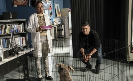 NCIS Season 18 Episode 10 Review: Watchdog