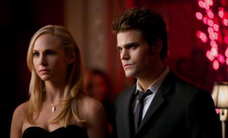 Is TVD Getting Repetitive?