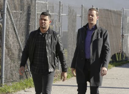 Watch NCIS Season 14 Episode 17 Online