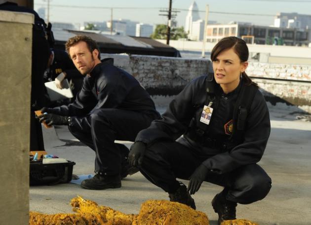 Hodgins and Brennan