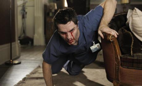 Aidan's Blood