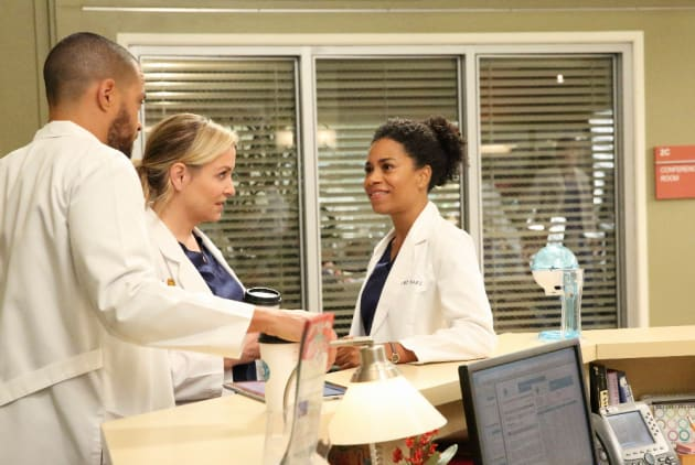 Plotting - Grey's Anatomy Season 13 Episode 12