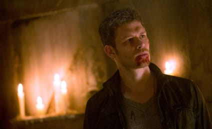 The Originals Season 2: A New Hybrid, A Stunning Return & More!