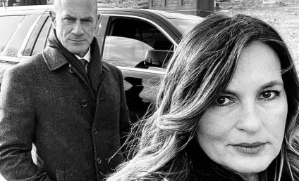 Law & Order: SVU: Mariska Hargitay Confirms Appearance on Elliot Stabler Spinoff
