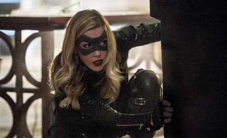 Crouching Canary - Arrow Season 4 Episode 6