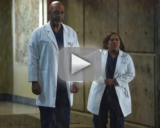 Watch Grey\'s Anatomy Online: Season 13 Episode 9 - TV Fanatic
