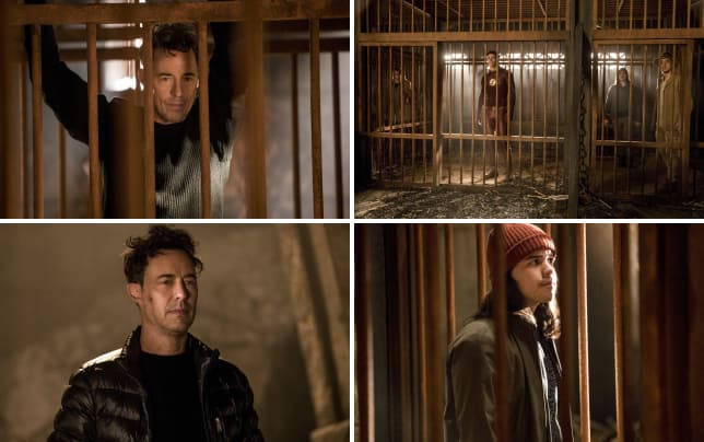 Caged harry the flash