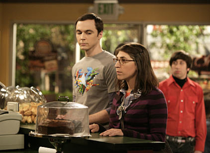 Watch The Big Bang Theory Season 3 Episode 23 Online