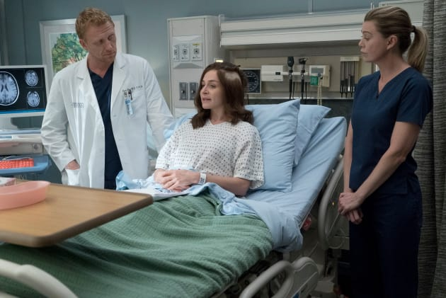Amelia's People - Grey's Anatomy Season 14 Episode 4