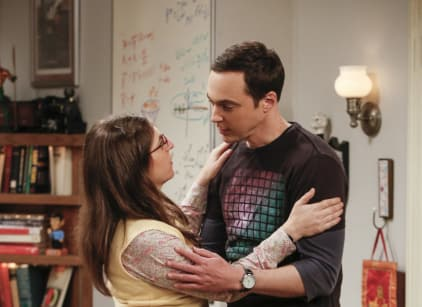 Watch The Big Bang Theory Season 10 Episode 23 Online