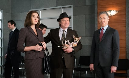 The Good Wife Season 7 Episode 16 Review: Hearing