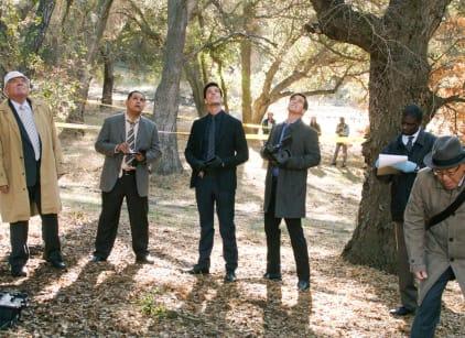 Watch Major Crimes Season 5 Episode 17 Online
