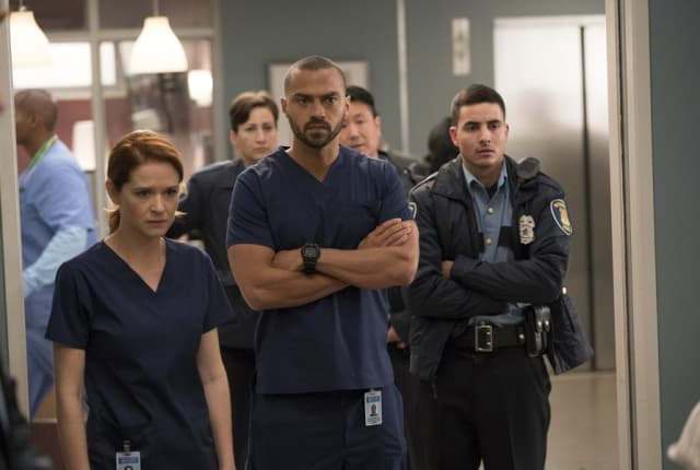 Watch Grey\'s Anatomy Online: Season 14 Episode 10 - TV Fanatic