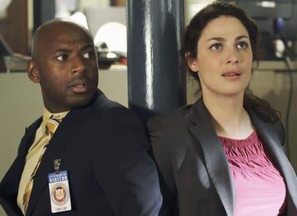 Watch No Ordinary Family Season 1 Episode 13 Online
