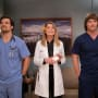 Meredith, Link DeLuca - Grey's Anatomy - General Hospital