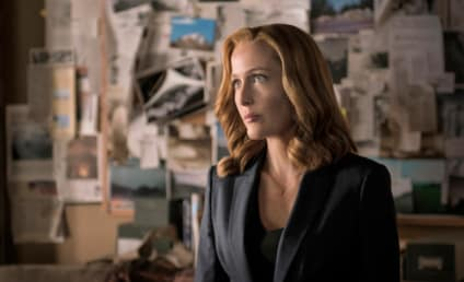 The X-Files: Gillian Anderson Quits!