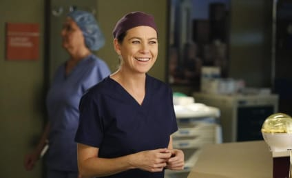 Grey's Anatomy Season 12: What to Expect from Whom