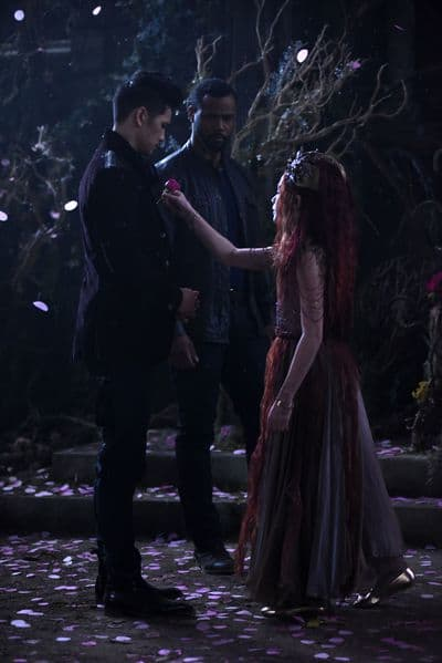 Demanding an Answer - Shadowhunters
