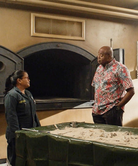 Not Much to Go On - Hawaii Five-0 Season 9 Episode 21