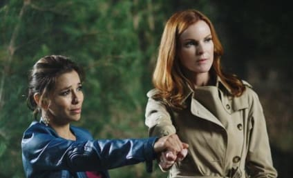 "Desperate Housewives Review: ""Secrets That I Never Want to Know"""