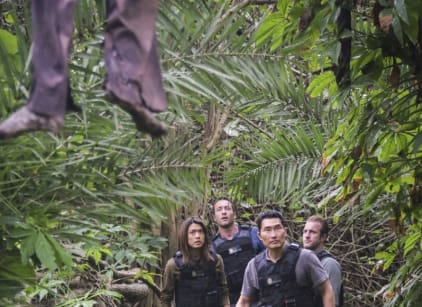 Watch Hawaii Five-0 Season 7 Episode 21 Online