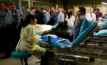 Grey's Anatomy Season 11 Episode 18 Review: When I Grow Up