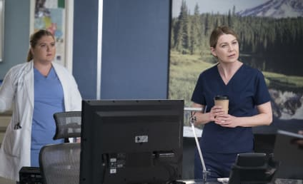 Grey's Anatomy Trio Sign New, Multi-Year Deals - Will the Show Continue Without Ellen Pompeo?