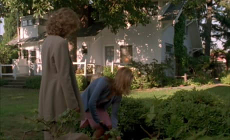 Stray Cat - Buffy the Vampire Slayer Season 3 Episode 2