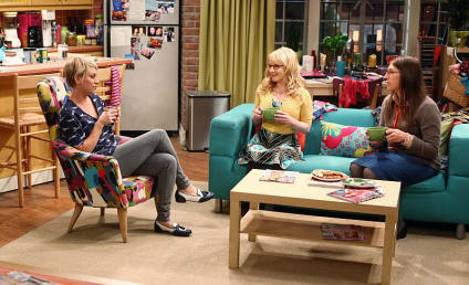 The Big Bang Theory Season 8 Episode 7 Review: The Misinterpretation Agitation