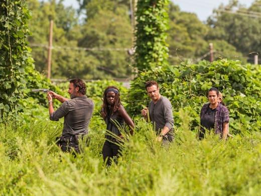 A New Community - The Walking Dead